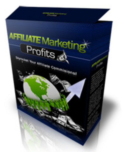 Product picture Affiliate Marketing Profits (2011)